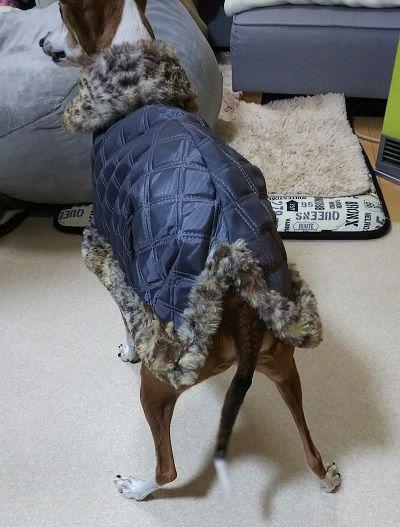 犬服コート3