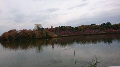 鶴見緑地3
