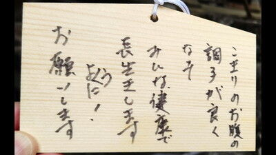 犬上神社イタグレ (5)