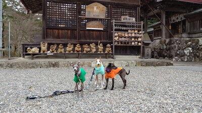 大瀧神社犬上神社 (5)