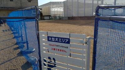 GRAVA_ドッグラン (7)
