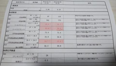 イタグレ_ジェイ_こ血液検査1