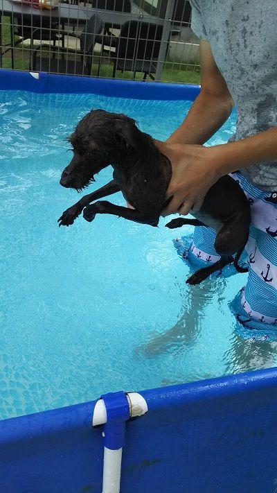 イタプー水泳1