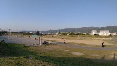 花園中央公園イタグレ (6)