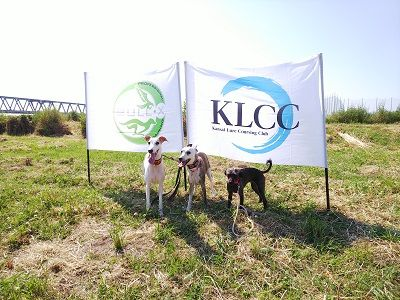 KLCC記録会15
