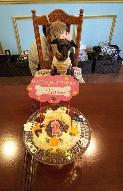 イタプー鈴(りん)2歳誕生日会お家サロン2