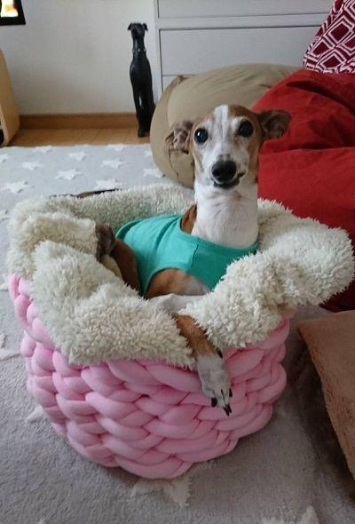 手編犬用ベッド7