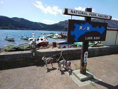 箱根スカイライン_イタグレ16
