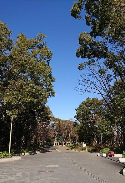 靭公園散歩1