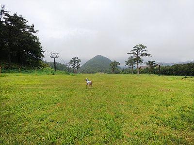 大山高原豪円山ロッジ15