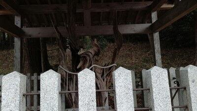 大瀧神社犬上神社 (9)