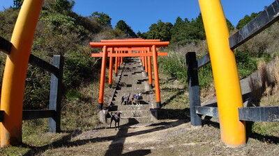 獅子崎稲荷神社 (3)
