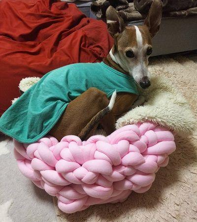 手編犬用ベッド4