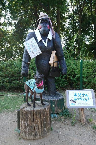大泉緑地公園11