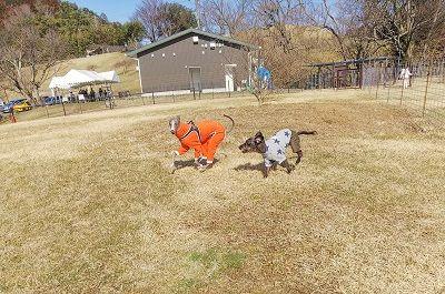 黒沢牧場ドッグラン14