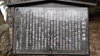 大瀧神社犬上神社 (3)