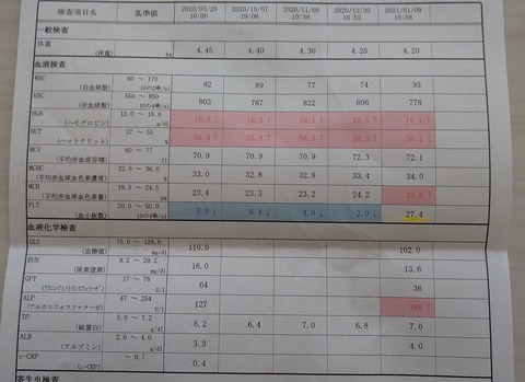 イタグレこまり_介在性血小板減少症 (3)