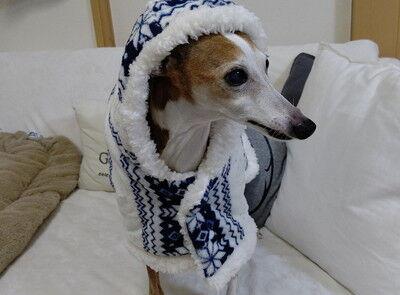 コーナン犬用ポンチョ (4)