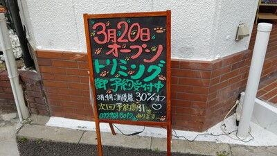 ドッグカフェ_デイジーベル1