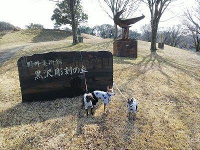 黒沢牧場ドッグラン16