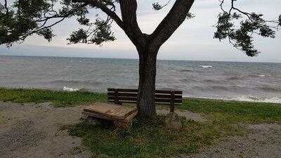 あのベンチ (6)