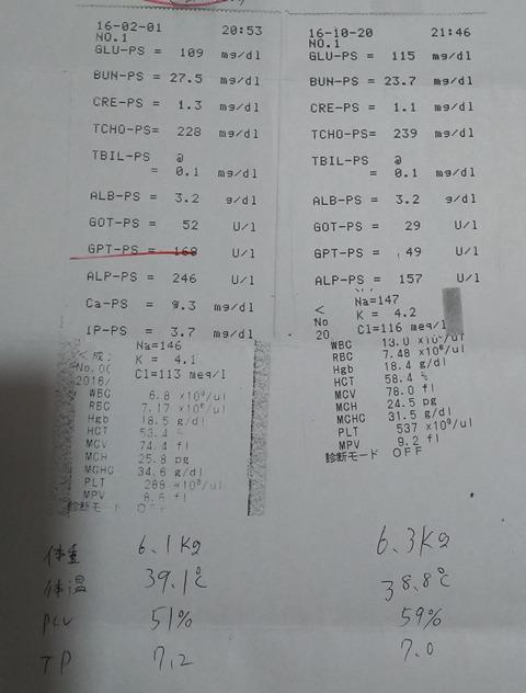 ジェイ_健康診断4