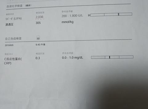 イタグレ_ジェイ_こ血液検査3