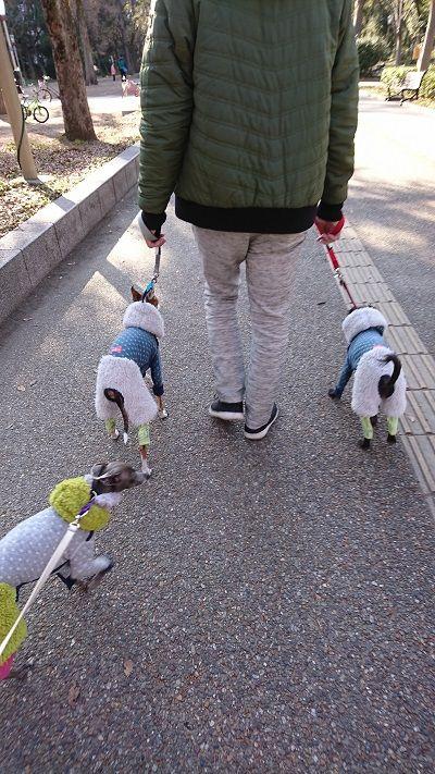 靭公園散歩4