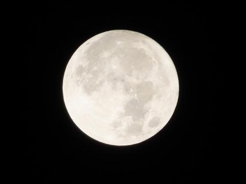 中秋の名月 (1)