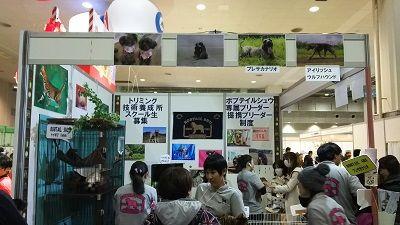 ジャパンペットフェア6
