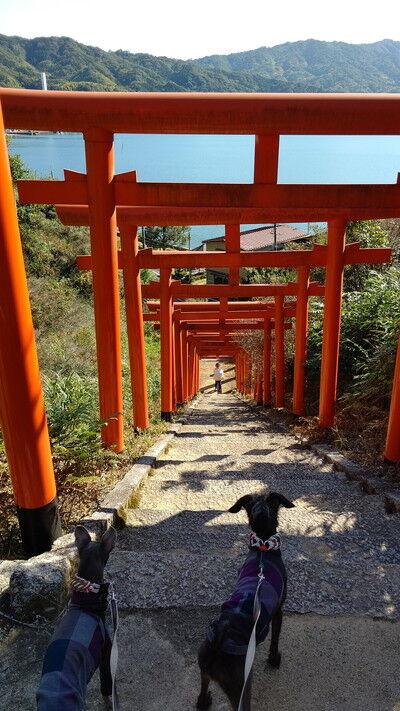 獅子崎稲荷神社 (4)
