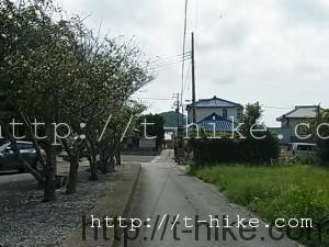 RIMG0408