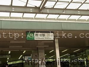 市川駅からじゅんさい池公園~里見公園~江戸川河川を散歩