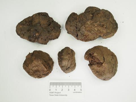 arukemaya541