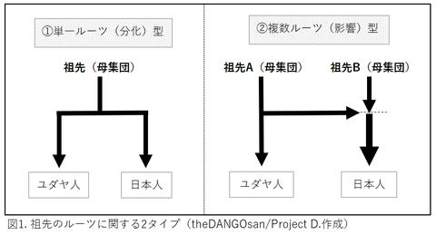 祖先の分化タイプ2