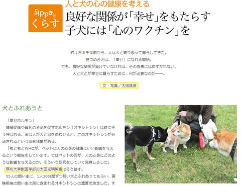 sippo太田匡彦太田光明