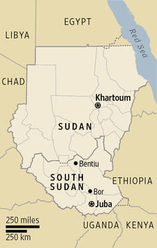 南スーダンwsj