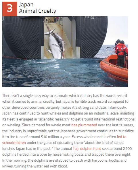 ランキングサイト日本動物虐待
