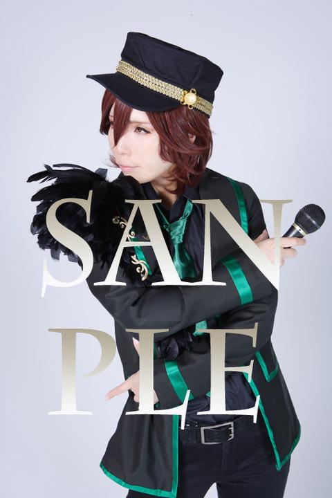 sanple1