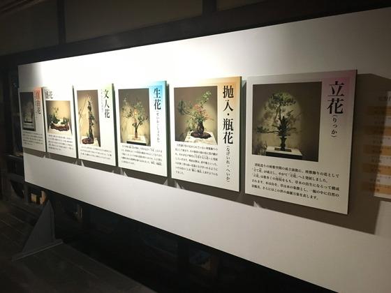 ikebanahyakudan2017 (27)