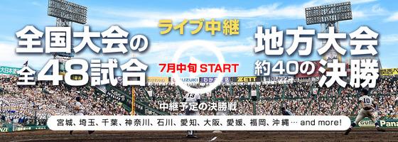 高校野球ライブ中継