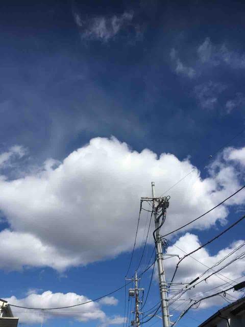 いわし雲なお高うなる月の山  森  敦