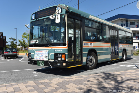 D81_4155