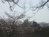 大阪城 eランニング 2