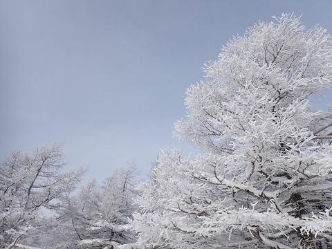 101 雪景色