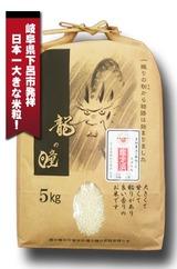 1ryu-5kg-sf
