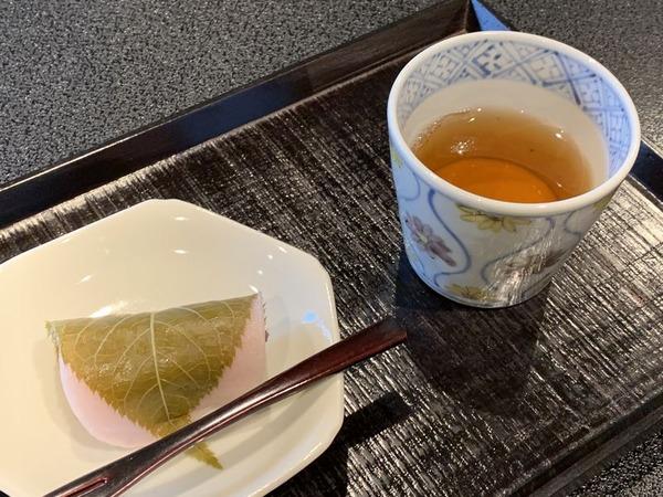 実生 (9)