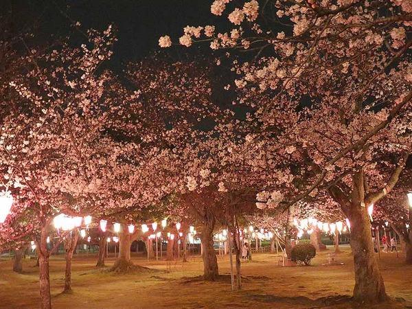 芦城公園 (11)