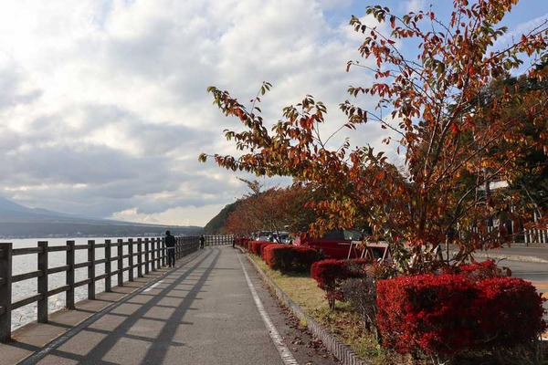 山中湖 (9)