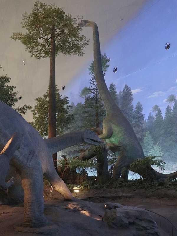 恐竜博物館 (24)